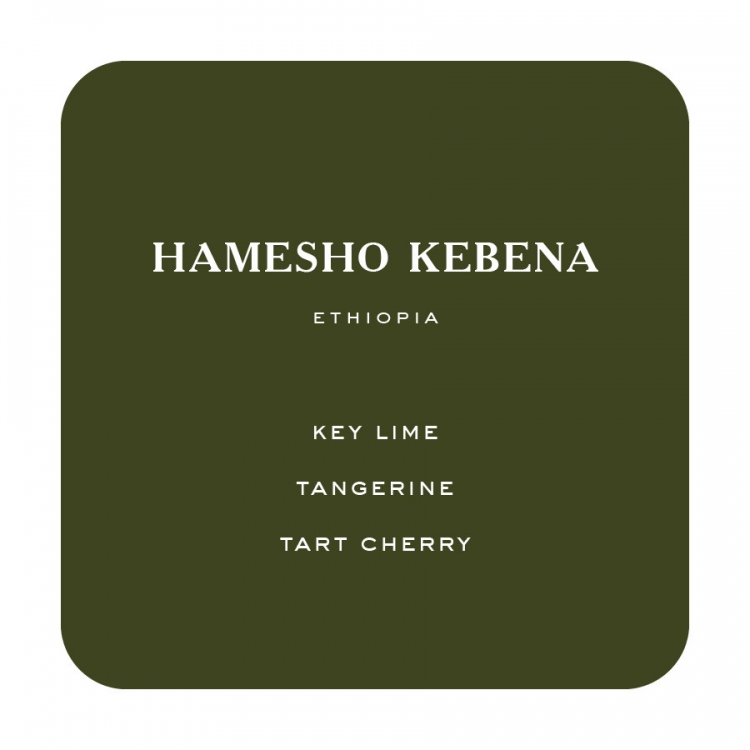 timbertrain coffee hamesho flip1 -