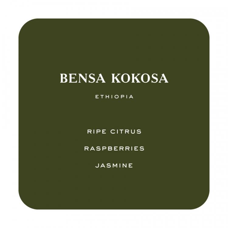 Bensa1 -