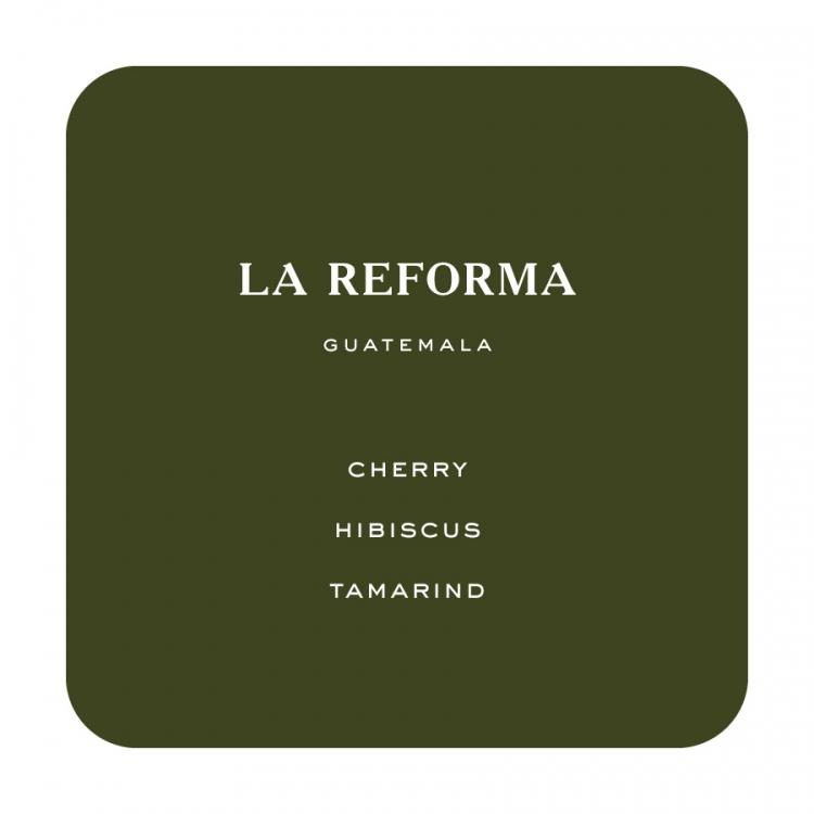 Reforma1 -
