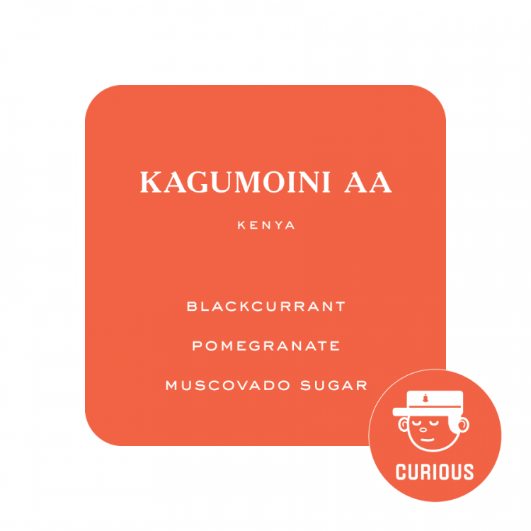 Ken Kagum Flip 1 -