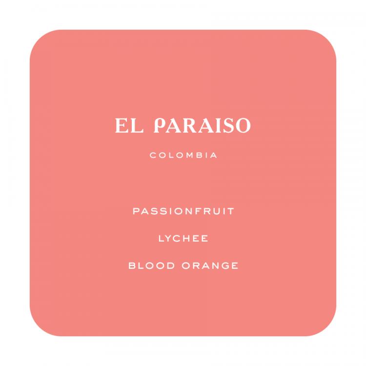 ElParaiso 1 -